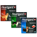 Heartgard Plus Chews