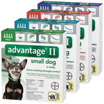 Advantage II for Dogs