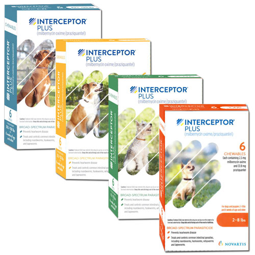 Interceptor heart worm medicine