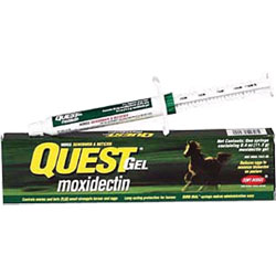 Quest REGULAR Gel - 11.3g Syringe