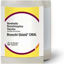 Bronchi-Shield ORAL