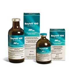 Baytril Injectable  100mg/ml - 250ml