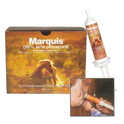 Marquis - 127gm Oral Paste