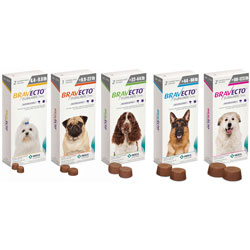 Bravecto Flea/Tick Chewable Tablet