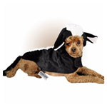 Lil Skunk Costume for dogs