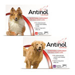Antinol For Dogs