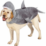Canine Shark Costume