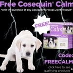 Cosequin Calm Promotion Items