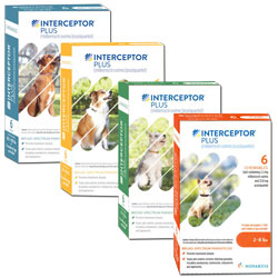 Interceptor Plus Chewables