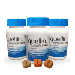 Quellin Soft Chewables