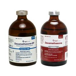 Dexamethasone Injectable 2mg
