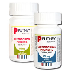 Cefpodoxime Tablets for Dogs