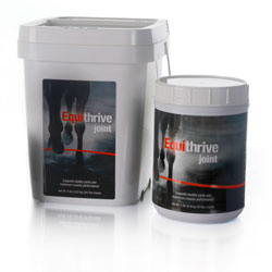 Equithrive Joint Powder