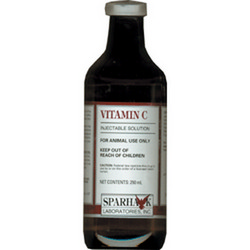 Vitamin C  Injectable 250mg - 250ml