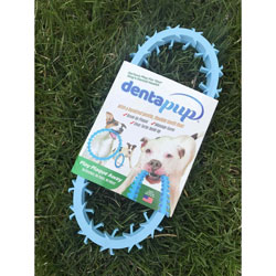 Dentapup Canine Dental Toy