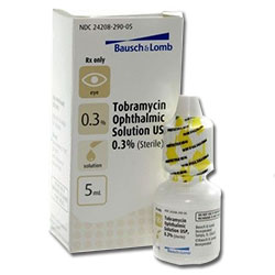 Tobramycin Ophthalmic Solution