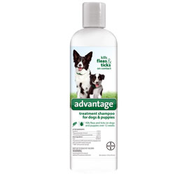 Advantage Treatment Shampoo for DOGS - 12 oz