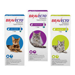 Bravecto Feline Topical