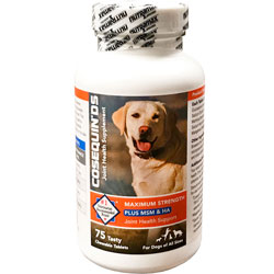 Cosequin DS Plus MSM & HA for Dogs