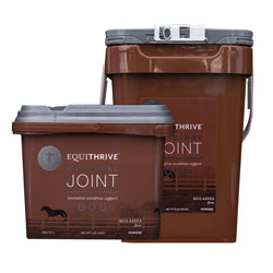 Equithrive Joint Powder (Molasses Flavor)