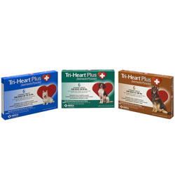Tri-Heart Plus Chews