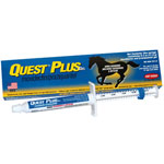 Quest PLUS Gel - 11.6g Syringe