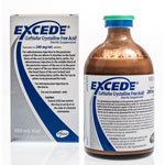 Excede for Horses Injectable 200mg/ml - 100ml