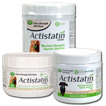 Actistatin Dog Soft Chews