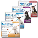 NexGard for Dogs - 3 month