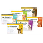 Simparica (Sarolaner) Chews for Dogs